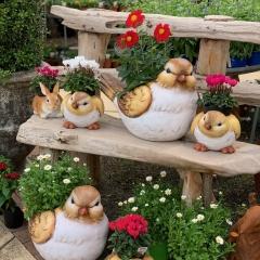 Tweety-planters